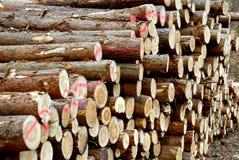 Piles en bois Images libres de droits