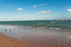 Piles of fishermen Stock Image