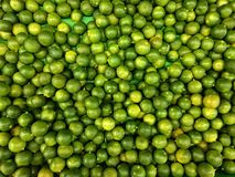A piles of fresh limes Royalty Free Stock Image