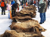 Piles of Furs. A crowd gathering for the fur auction taking place at the 2009 Fur Rondy event in Anchorage, Alaska Stock Photography