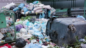 Piles of Garbage Bags in the City stock video footage