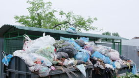 Piles of Garbage Bags in the City stock footage