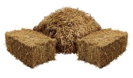 Piles Of Hay. Isolated on a white background as an agriculture farm and farming symbol of harvest time with dried grass straw as a mountain of dried grass royalty free illustration