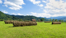 Piles of hay at  mountains Stock Photography