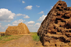 Piles of hays on a farm. On a beautiful sunny day Royalty Free Stock Photo