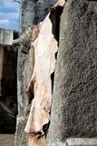 Piles of leather medina Marrakech Stock Photography