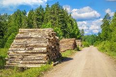 Piles of logs near forest road in summer Stock Images