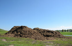 Piles of mulch Stock Photography