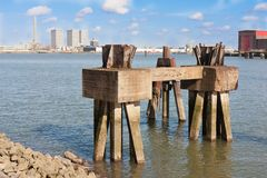 Piles of an old jetty in harbor Royalty Free Stock Image