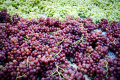 Piles of organic red and green grapes. Stacks of green and red grapes displayed in organic farmer's market Royalty Free Stock Photography