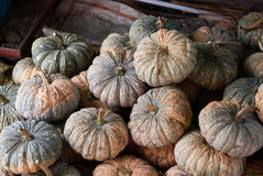 Piles of pumpkins in a marketplace Royalty Free Stock Photo