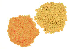 Piles red peeled and green unpeeled Lentils. Stock Photos