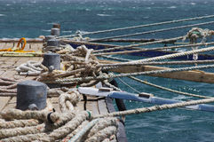 Piles with ropes on the sea mooring Stock Image