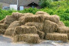 Piles sèches de foin dans une ferme Images libres de droits