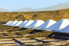 Piles of salt in the Salinas de Janubio, Lanzarote Royalty Free Stock Images