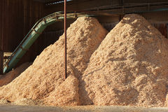 Piles of sawdust Stock Image