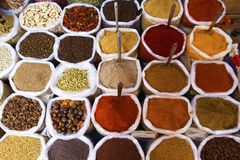 Piles of spices. Stock Image