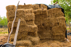 Piles of straw Royalty Free Stock Photography