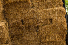 Piles of straw Stock Photography