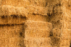 Piles of straw Stock Images