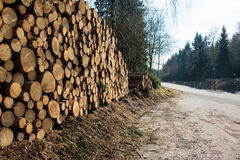 Piles of timber along the forest road Stock Photo