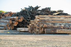 Piles of timber, lumber and recycled wood stock images