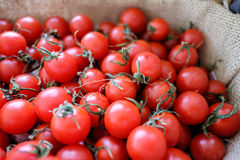 Piles of Tomatoes in weave basket Royalty Free Stock Photo