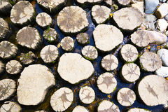 Piles in water. Piles in the water to move water with dry feet Stock Images