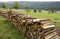 Piles of wood. Piles of sawed wood in rural scenery with a forest in the background royalty free stock image