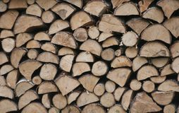 Piles of wood in forest Poland. Piles of wood in forest Royalty Free Stock Image