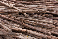Piles of wood. Royalty Free Stock Images