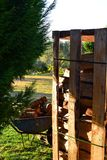 Piles of wood in pallet and wheelbarrow in garden. stock photography