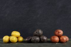 Piles of yellow, purple and red little potatoes over slate Royalty Free Stock Photos