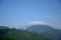Pileus  in  landscape Thailand Royalty Free Stock Photos