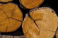 Pilewood i en bunt som är klar att användas i vinter arkivbilder