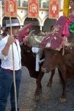 Pilgimage in Dos Hermanas Seville 36 royalty-vrije stock foto's