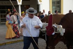 Pilgimage in Dos Hermanas Seville 45 Stock Foto's