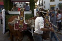 Pilgimage in Dos Hermanas Seville 54 Stockbild