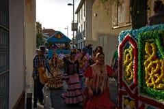 Pilgimage in Dos Hermanas Seville 86 Royalty-vrije Stock Foto