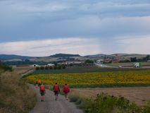Pilgrim along the way of St. James. Man walking on Camino de Santiago. Royalty Free Stock Photography