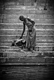 A Pilgrim bathes and washes in the holy waters of the Ganges, Varana Stock Image