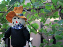 Pilgrim doll. Thanksgiving pilgrim doll hanging from tree. home decor. outdoors royalty free stock photo