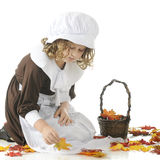 Pilgrim Girl Collecting Leaves Stock Photo