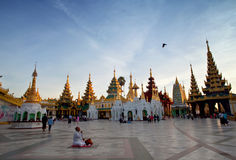 Pilgrim praying at golden Shwedagon Pagoda in Yangon, Myanmar Stock Photography