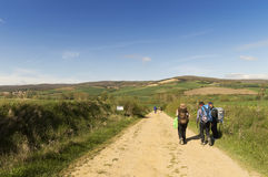 Pilgrim on the road to Santiago de Compostela in Burgos Royalty Free Stock Images