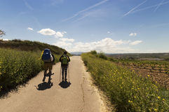 Pilgrim on the road to Santiago de Compostela in Burgos Royalty Free Stock Photo