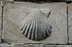 Pilgrim's shell (Venera) symbol of St James Royalty Free Stock Photos