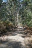 Pilgrim trail, Camino de Santiago, Portugal Stock Image