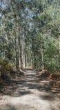 Pilgrim trail, Camino de Santiago, Portugal Royalty Free Stock Photography