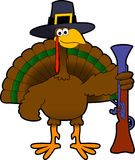 Pilgrim_turkey Stock Image
